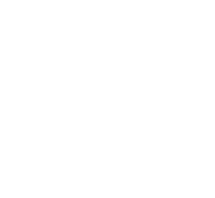 straddle ale logo web